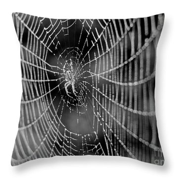 Spider In A Dew Covered Web - Black And White Throw Pillow