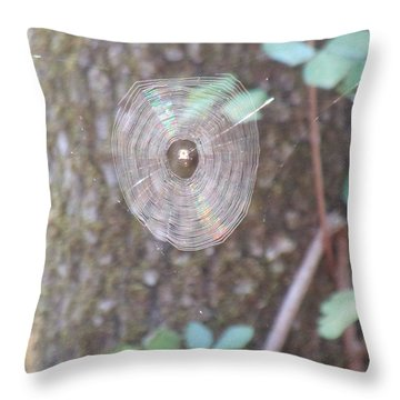 Throw Pillow featuring the photograph Spider In The Round by Marie Neder