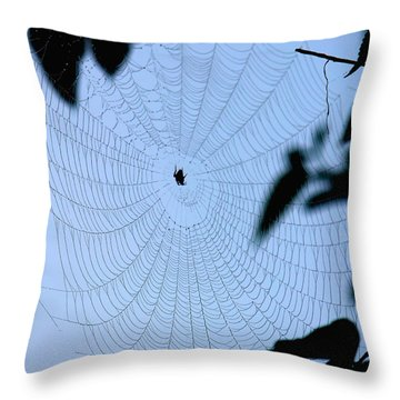 Spider In Web Throw Pillow