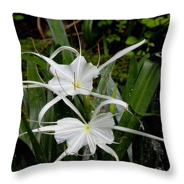 Throw Pillow featuring the photograph Spider Lilies by Barbara Bowen