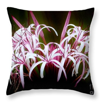 Spider Lilly Throw Pillow by Amar Sheow