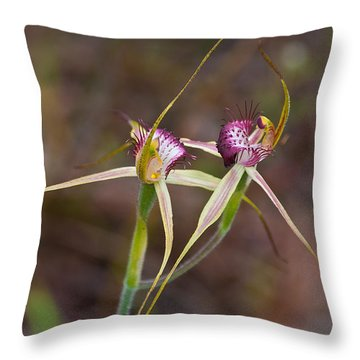 Spider Orchid Australia Throw Pillow