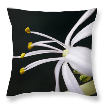 Spider Plant Flower Throw Pillow
