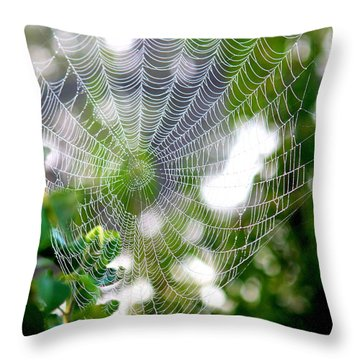 Spider Web 2 Throw Pillow