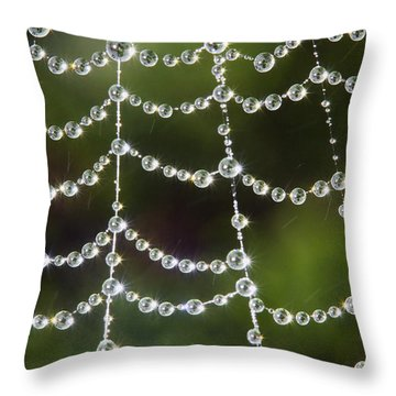 Spider Web Decorated By Morning Fog Throw Pillow by William Lee