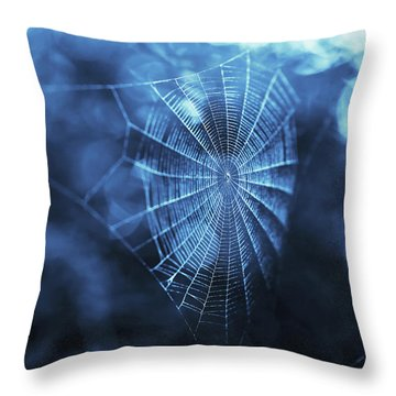 Spider Web In Blue Throw Pillow