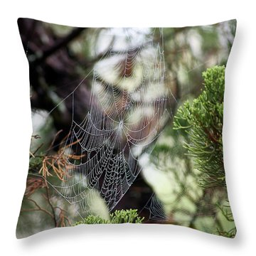 Throw Pillow featuring the photograph Spider Web In Tree by Willard Killough III
