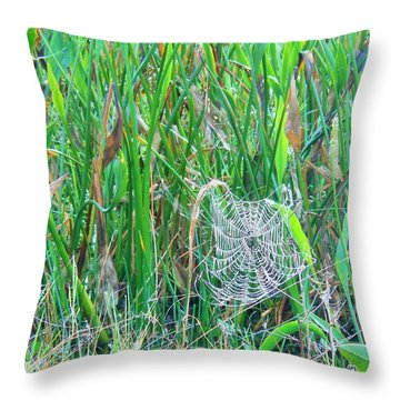 Spider Web Throw Pillow by Kay Gilley