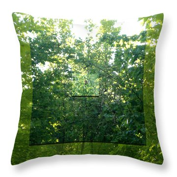 Throw Pillow featuring the photograph Spider-web Squares by Michelle Audas