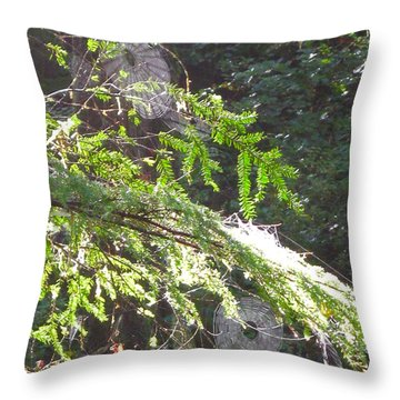 Spider Webs  -- Olympic National Park Throw Pillow