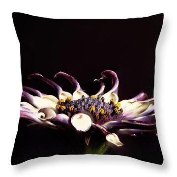 Spider White Throw Pillow