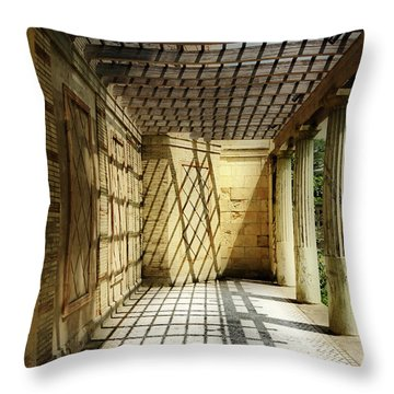 Spider's Den Throw Pillow