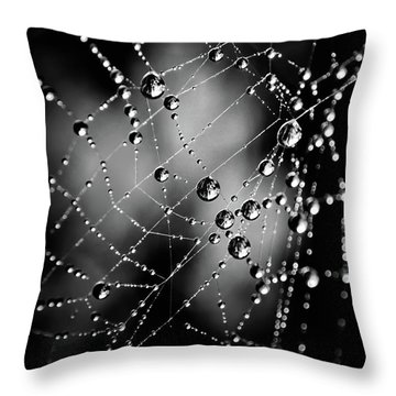 Spiderweb No 3 Throw Pillow