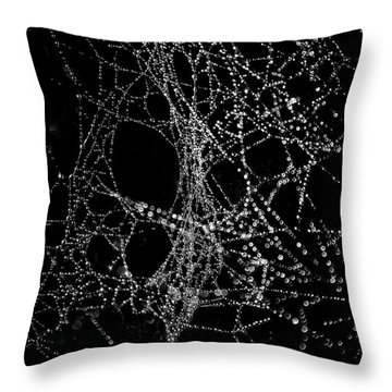 Spiderweb No 4 Throw Pillow