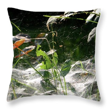 Spiderweb Over Rose Plants Throw Pillow by Emanuel Tanjala