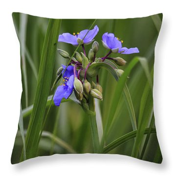 Spiderwort Throw Pillow by Gary Hall