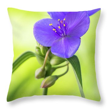Spiderwort Wildflower Throw Pillow