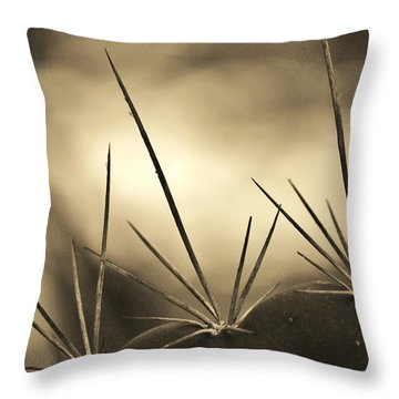 Spiked Throw Pillow