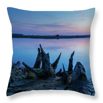 Spikes In Blue Throw Pillow