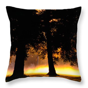 Throw Pillow featuring the photograph Spilled Suinshine by Tikvah's Hope