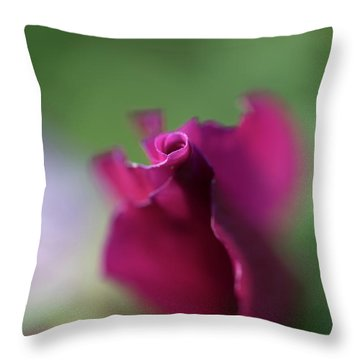 Spinning With Rose 2 Throw Pillow