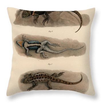 Throw Pillow featuring the drawing Spiny Lizards, Sceloporus by Carl Wilhelm Pohlke