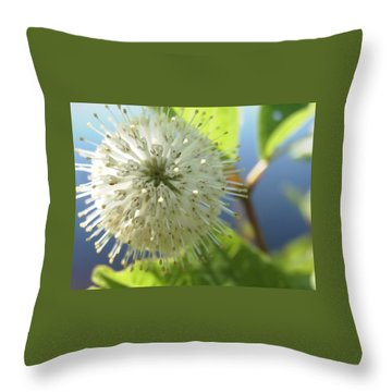 Spiral Beauty Throw Pillow