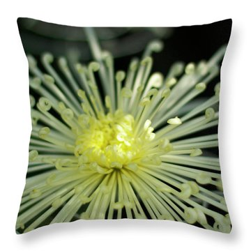 Spiral Chryanth Throw Pillow