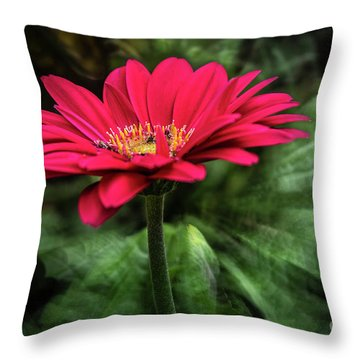 Spiral Pink Flower Focus Throw Pillow