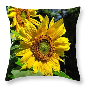 Spirals Of Sun Throw Pillow