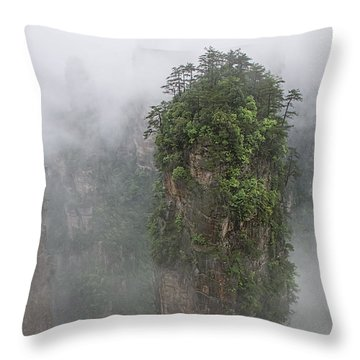 Spire Throw Pillow by Wade Aiken