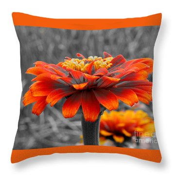 Spirit Lifter Throw Pillow by Chad and Stacey Hall