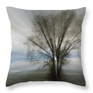 Throw Pillow featuring the photograph Spirit Of Nature by Sandra Bronstein
