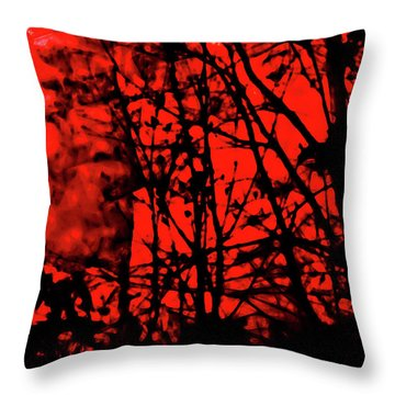 Spirit Of The Mist Throw Pillow