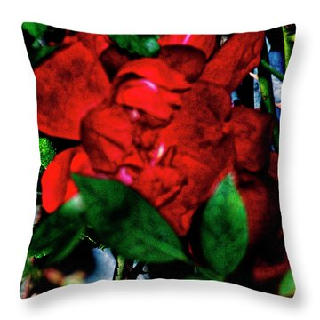 Spirit Of The Rose Throw Pillow by Gina O'Brien