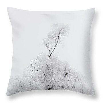 Throw Pillow featuring the photograph Spirit Tree by Dustin LeFevre