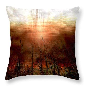 Spiritual Awakening Throw Pillow by Linda Sannuti
