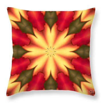 Spiro#4 Throw Pillow