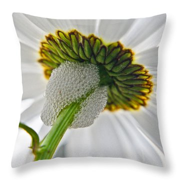 Spittle Bug Umbrella Throw Pillow