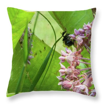 Spl-1 Throw Pillow