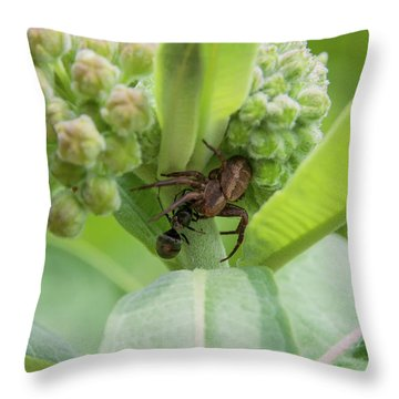 Spl-2 Throw Pillow