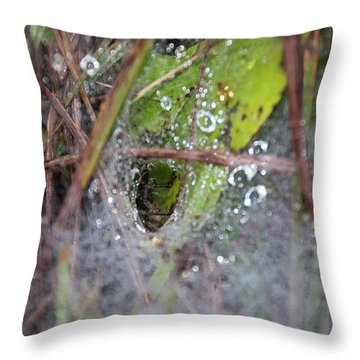 Spl-3 Throw Pillow