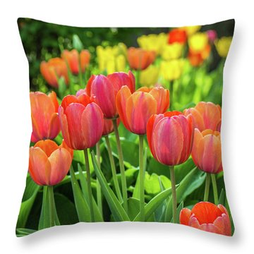 Throw Pillow featuring the photograph Splash Of April Color by Bill Pevlor