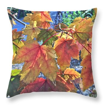 Splash Of Autummmmmm Throw Pillow