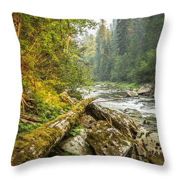 Splash Of Sunlight Throw Pillow by Brad Stinson