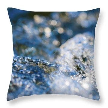Splash One Throw Pillow