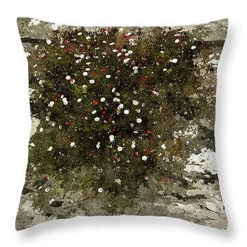 Throw Pillow featuring the photograph Splash by Tom Vaughan