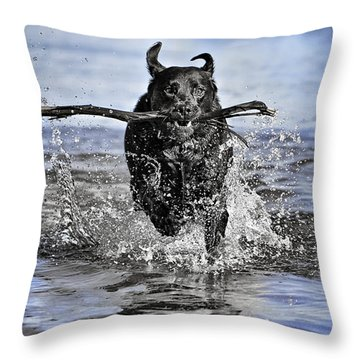 Splashing Fun Throw Pillow
