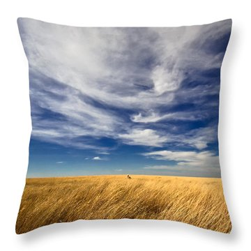 Throw Pillow featuring the photograph Splendid Isolation by Carl Young