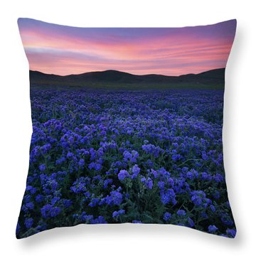 Splendid Sunrise Over The Carrizo Plain Throw Pillow